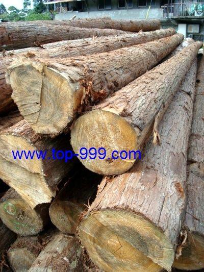 杉木原木及木材订制品(r)